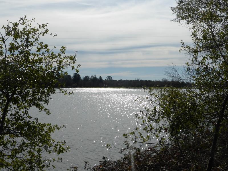 Lake natoma loop for Lake natoma fishing